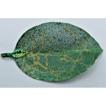 Leaf Pendant - Dark Green with Gold Vine