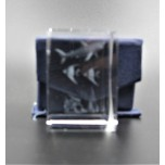 Crystal imitation Quartz Rectangle w Shark  (3 x 3 x 4 cm)