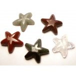 Starfish Carved Fetish Bead 0.75 Inch - Assorted Stones