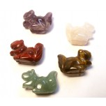 Squirrel Carved Fetish Bead 0.75 Inch - Assorted Stones