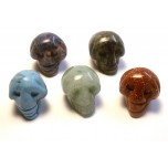 Skull Carved Fetish Bead 0.75 Inch - Assorted Stones