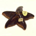 Starfish 1.5 Inch Figurine - Tiger Eye