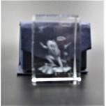 Crystal imitation Quartz Rectangle w Frog (3 x 3 x 4 cm)