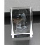 Crystal imitation Quartz Rectangle w Wolf  (3 x 3 x 4 cm)